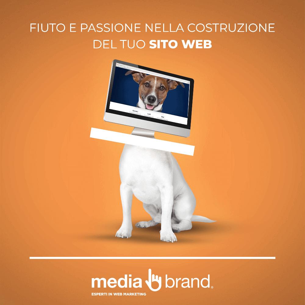 sito internet costruito con passione e fiuto da cane